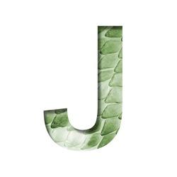 Snake scales font. The letter J cut out of paper on the background of a green snake skin with large scales. Set of decorative fonts.