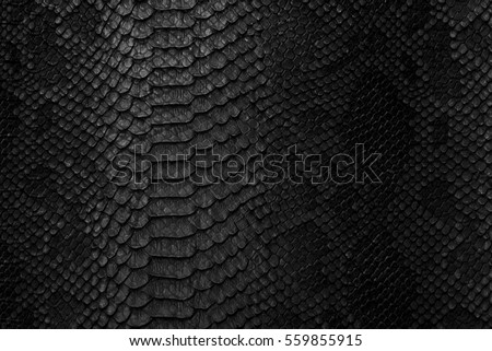 Snake skin background. Close up. #559855915