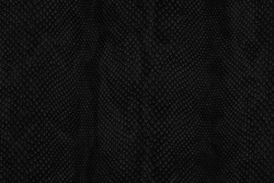 snake skin black