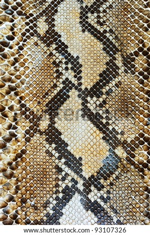 Snake skin pattern background
