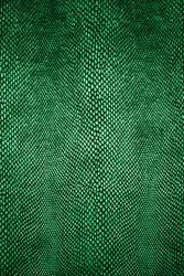 Snake skin pattern. Green snake skin texture. Snake background