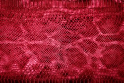 Snake skin red background. Red Leather texture. Flat lay, top view, copy space