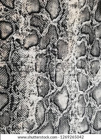 snake texture, snake skin, snake pattern