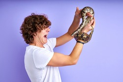 snake tied to hand, scared male is in shock, side view on curly guy looking at arm with snake isolated on purple background