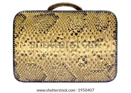 Snakeskin Bag w/ Path (Side View)
