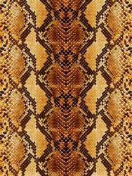 Snakeskin Leathers Background