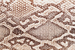 Snakeskin pattern on genuine leather close-up, imitation of exotic reptile, surface of beige brown color, trendy background