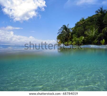 Snorkeling near tropical island in the Caribbean sea, Bocas del Toro, Panama