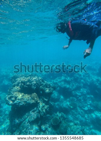 Snorkelling with life jacket amazed seeing coral reefs. Beginner learning to snorkel in tropical paradise ocean. #1355548685