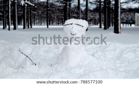 Snow background / Snow refers to forms of ice crystals that precipitate from the atmosphere and undergo changes on the Earth's surface #788577100