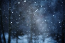 snow bokeh texture on black background