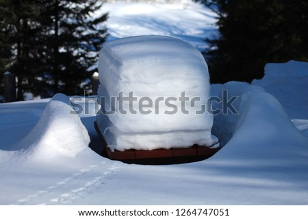 Snow cake pick nick table.