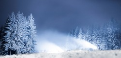Snow cannons at night on a forest road in the background of snowy trees