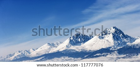 Snow capped summit of Tatry high under clear blue panoramic skies. #117777076