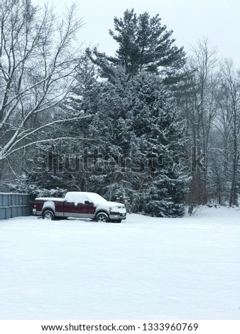 Snow Cover Tree With a Pic-Up Truck