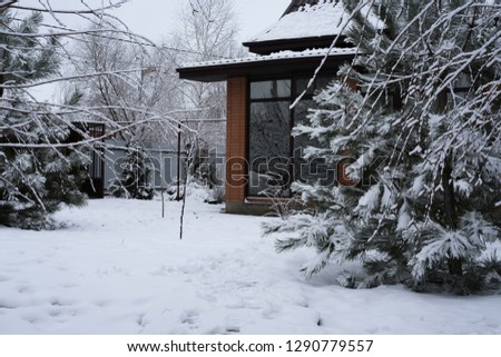Snow-covered area, which is covered with snow, in the frosty morning. Because of the branches you can see a private house with a glass veranda. #1290779557