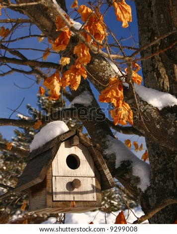 snow covered bird house with leaves and blue sky