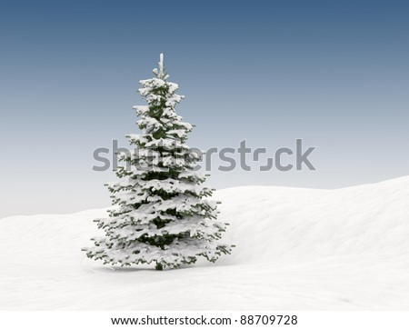 Snow covered Christmas tree - winter landscape