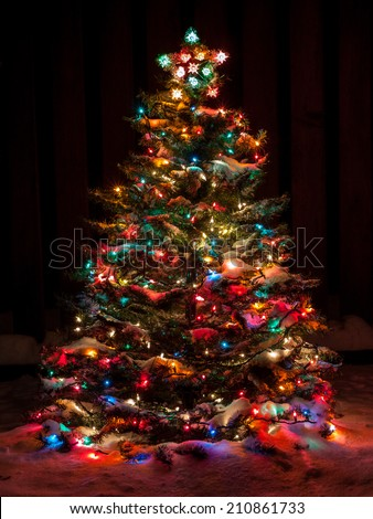 Snow Covered Christmas Tree with Multi Colored Lights at Night #210861733