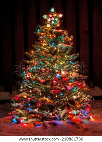 Snow Covered Christmas Tree with Multi Colored Lights at Night #210861736