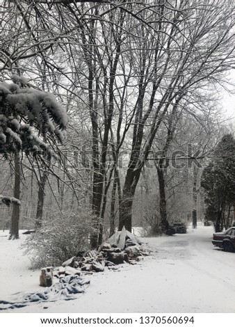 Snow covered driveway #1370560694