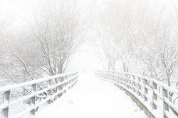 Snow covered footbridge on a foggy winter day