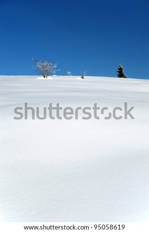snow covered landscape with trees in winter time - stock photo