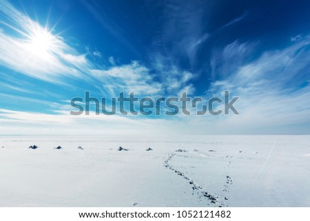 Snow-covered Ob sea on a Sunny day in March. Ob reservoir, Novosibirsk region, Western Siberia, Russia #1052121482