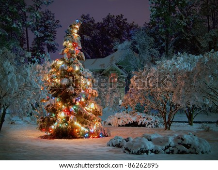 Snow covered outdoor Christmas tree with multicolored lights
