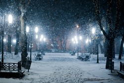snow covered park in the evening