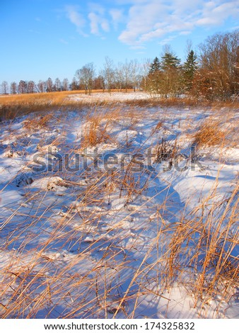 Snow covered prairie scene at Allerton Park in central Illinois
