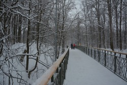 Snow-covered stairs and a pedestrian bridge over a ravine in the winter Park. A lot of snow on the beautiful road towards the forest.