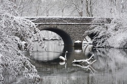 Snow Covered Trees Framing A Stone Bridge And River During Winter In The Park, Sharon Woods, Southwestern Ohio, USA