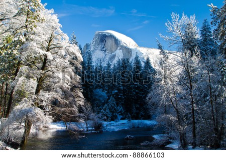 snow covered yosemite half dome and trees