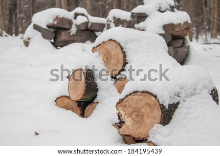 Snow covering cold firewood. #184195439