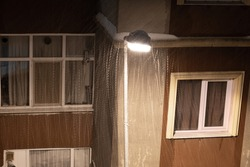 snow flakes appearing around shining street lamp at night in city