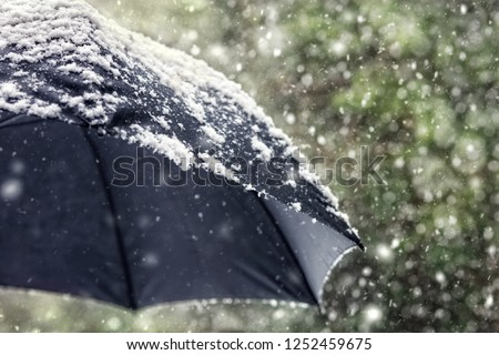 Snow flakes falling on a black umbrella concept for bad weather, winter or snowing blizzard
