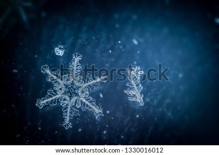 Snow flakes macro #1330016012