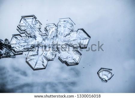 Snow flakes macro #1330016018