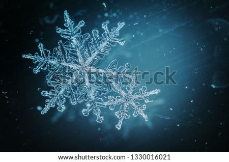 Snow flakes macro #1330016021
