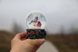 Snow globe souvenir with two bullfinches inside in hand against the background of an autumn landscape. Christmas waiting concept