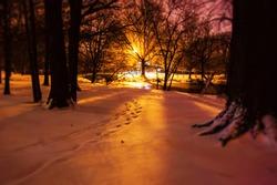 Snow in Fenway, Boston MA