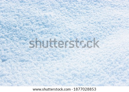 snow in sunny weather . fresh snow background. high angle view of snow texture Natural winter background with snow drifts and falling.