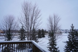 Snow in Winter season in Minnesota
