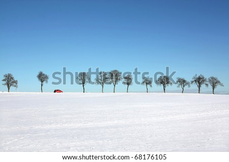 Snow landscape - tree line with a passing red car in a sunny winter day - suitable for banner (copyspace), foreground can be cut more by designers
