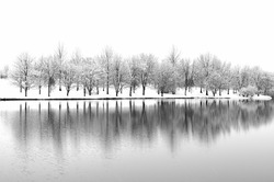 Snow Landscape with Tree Reflections