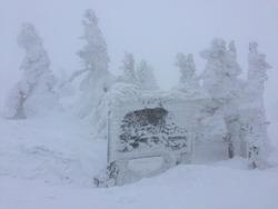 Snow Moster, Aomori, Japan