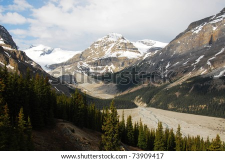 Snow mountains and forests in spring at columbia icefield area, jasper national park, alberta, canada