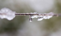 Snow on a clothesline as background.