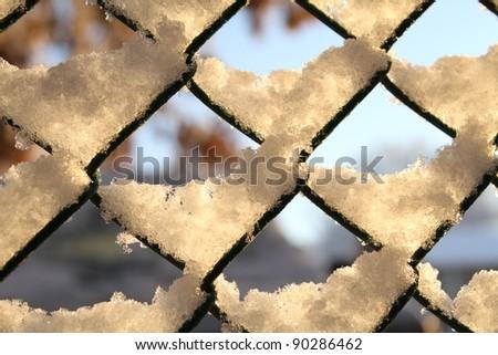 Snow on a fence